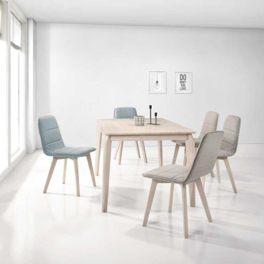 Scandinavian SET: 1 TABLE+6 CHAIRS