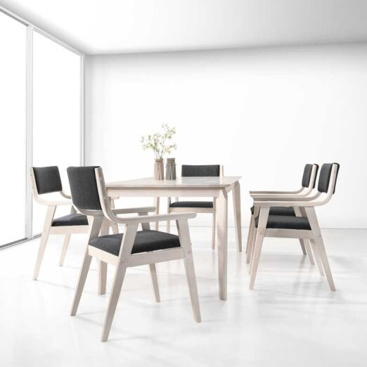 Scandinavian SET: 1 TABLE+6 ARM CHAIRS