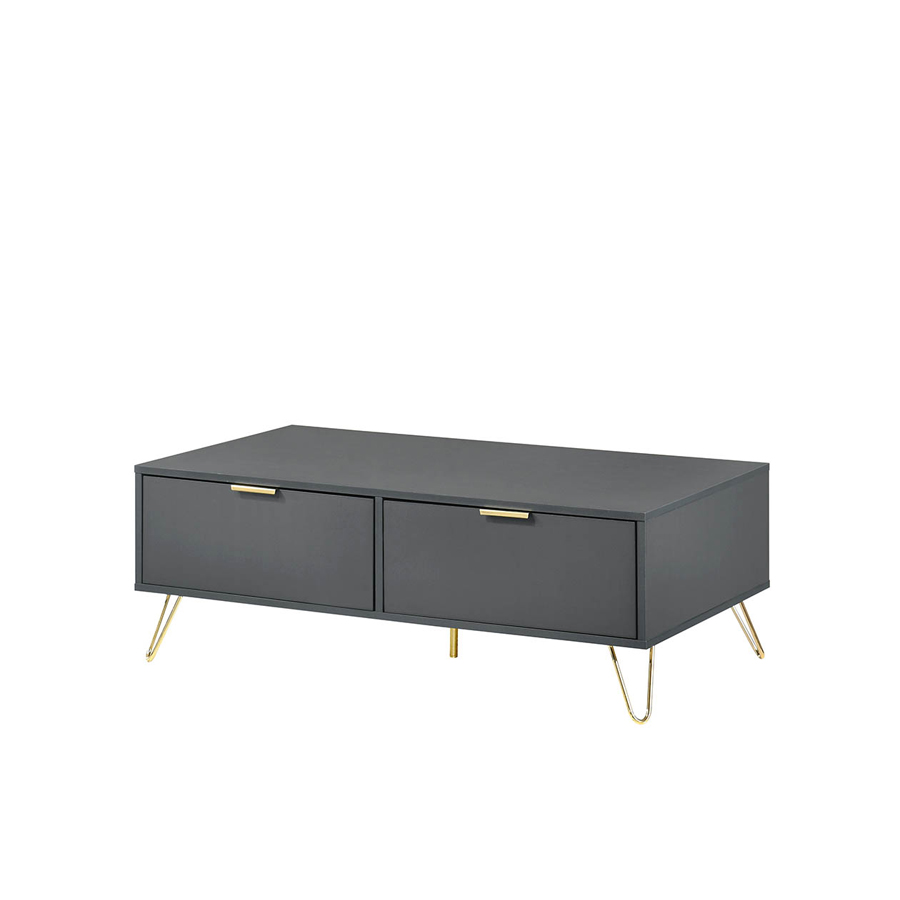 ARDEN COFFEE TABLE (2 DRAWER)